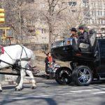 Friday Fun: Horse-Drawn Hummers!