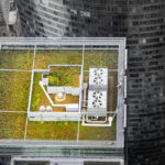 Research Recap, June 6: Green Roof Benefits, New Biofuel Source, Climate Change Adaptation
