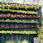New Report: The Potential for Urban Agriculture