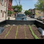 Let's Get Growing! Urban Farms Take to City Streets