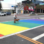 TheCityFix Picks, August 24: Rainbow Crosswalks, BMW Carsharing, Japanese BRT, Motivational Texting