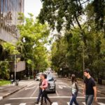Pioneering Open Government Innovations in São Paulo and Austin with the OGP Subnational Pilot Program