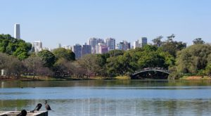 Help for São Paulo's Complex Water Woes: Protect and Restore Forests