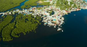 3 Steps to Scaling Up Nature-Based Solutions for Climate Adaptation