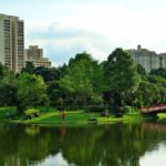 Collaboration on Nature-Based Solutions Is Key to Resilient City Infrastructure