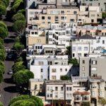 Bringing New Life to Fallen Urban Trees